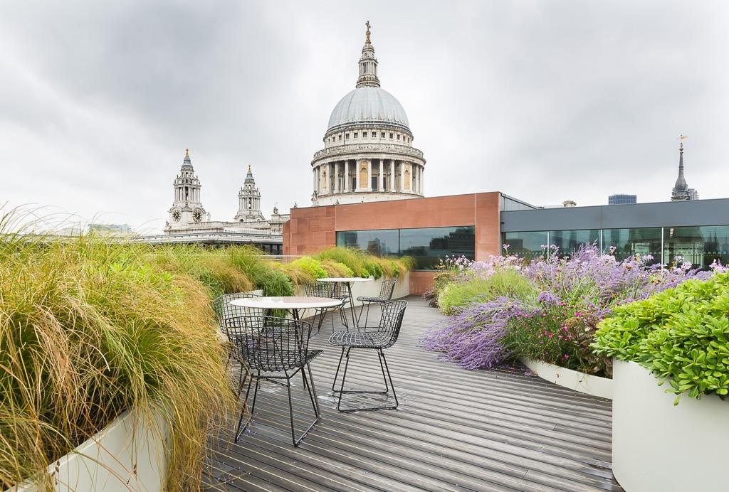 Roof top garden overlooking St Pauls Cathedral