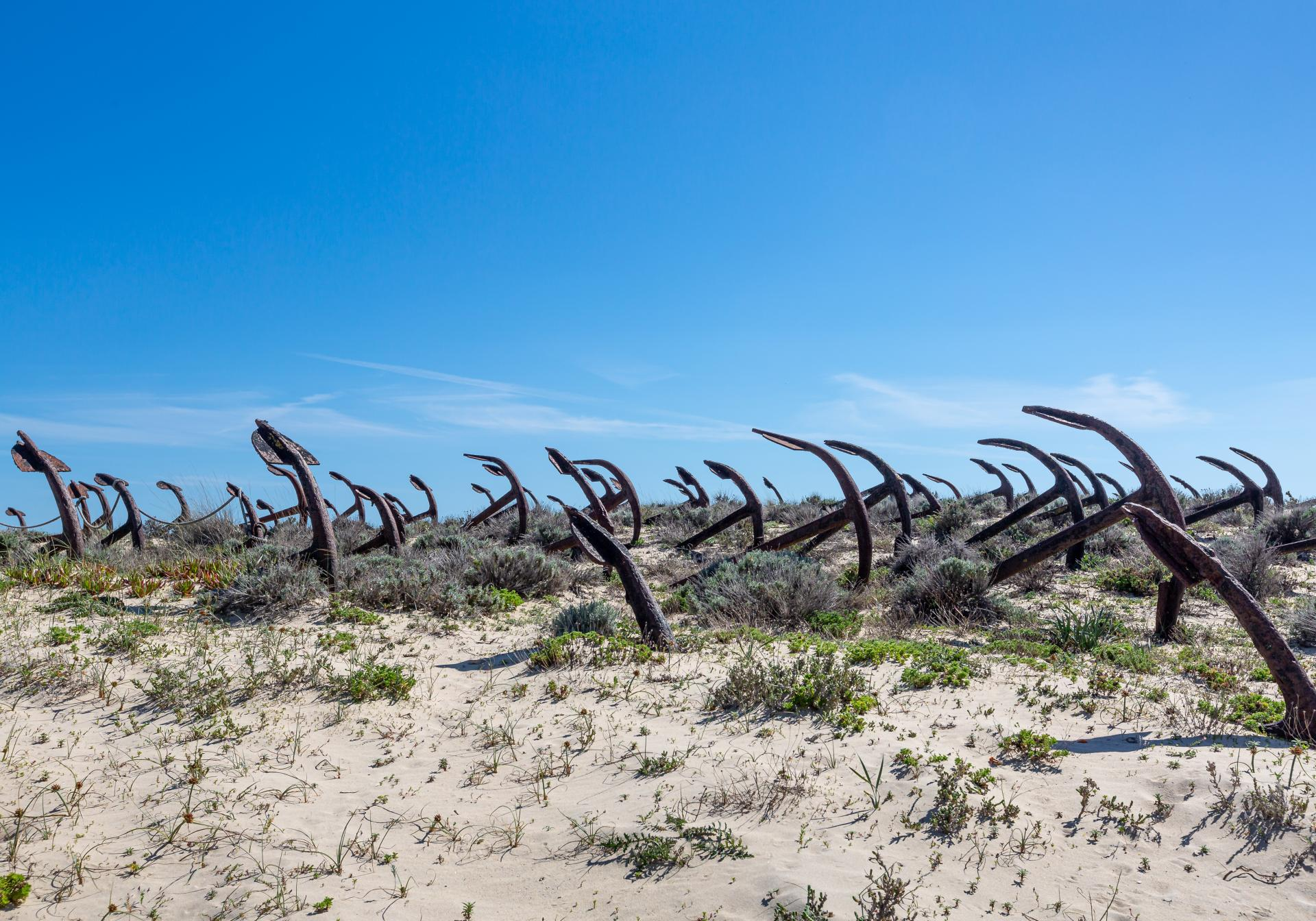 Anchor graveyard used to display old tuna boats anchors at Barril Beach , Tavira, Liane Ryan Photography